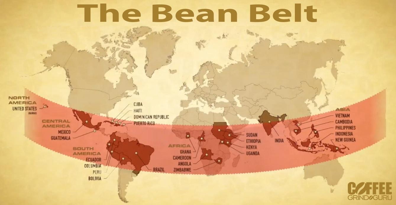 the bean belt