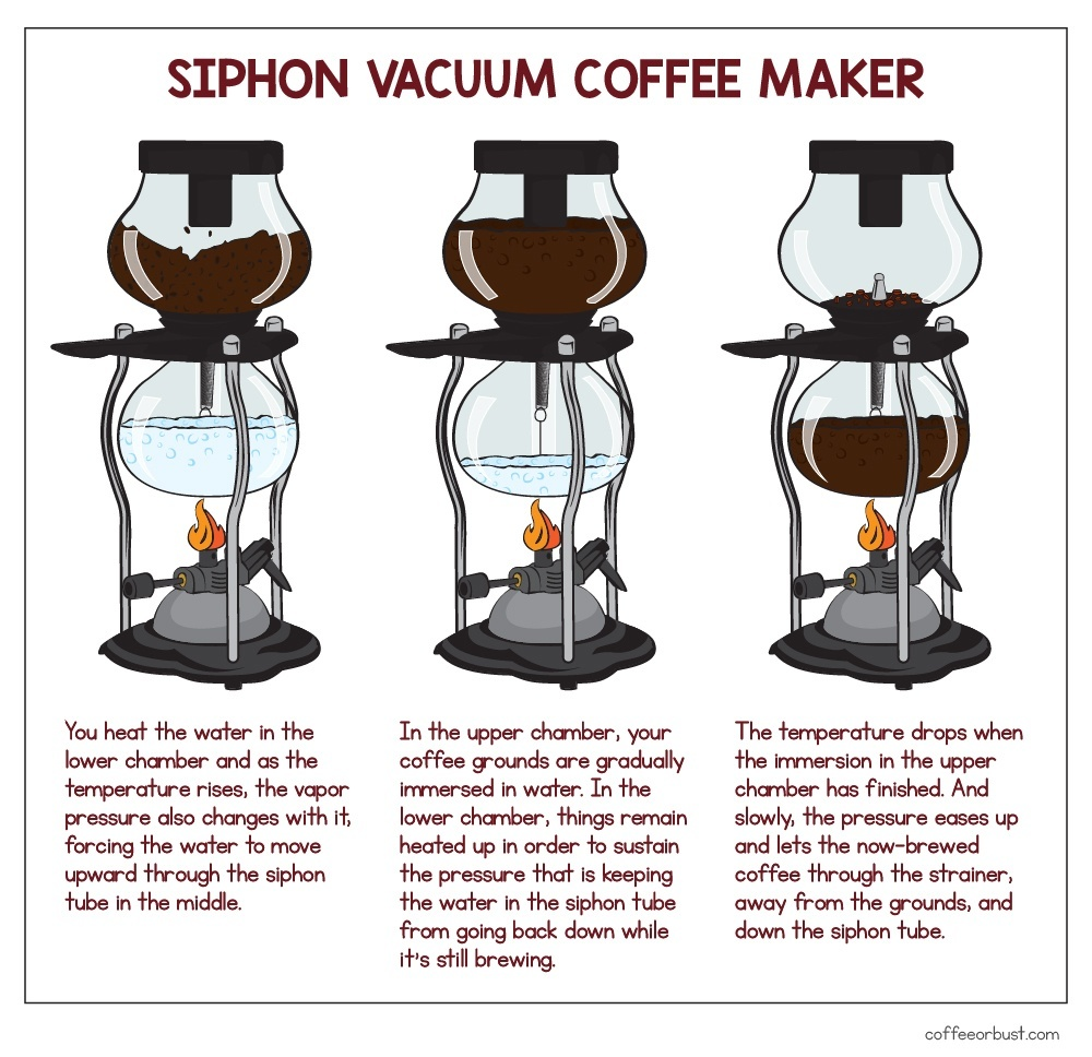 siphon coffee maker illustration